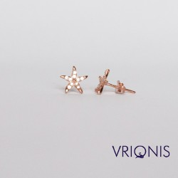 E222rM - Ασημένιο Σκουλαρίκι Επιχρυσωμένο με Ροζ Χρυσό